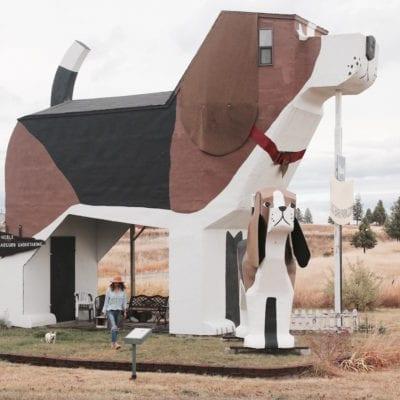 Sleep Inside A Beagle! Dog Bark Park Inn