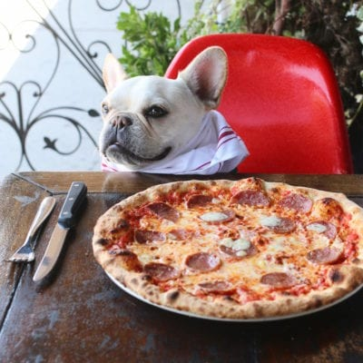 Top 5 Dog Friendly Pizza Places in LA
