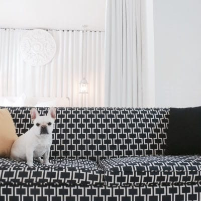 16 Dog-Friendly Hotels With No Weight Limit