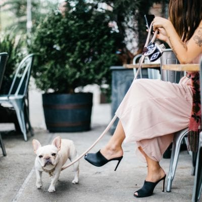 Where To Eat in NYC With Your Dog