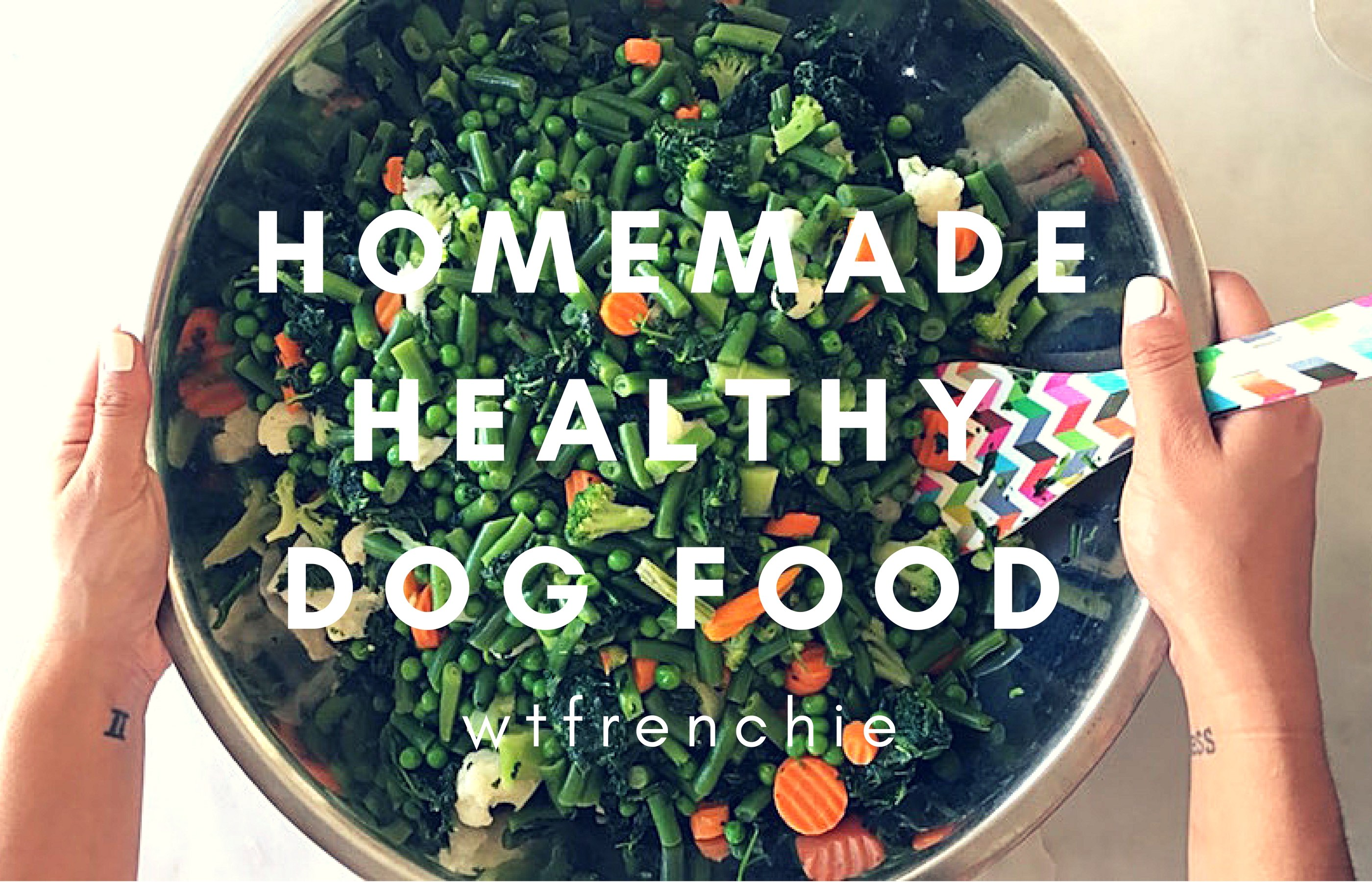Diy healthy homemade dog food using frozen veggies wheres the diy healthy homemade dog food using frozen veggies wheres the frenchie forumfinder Images