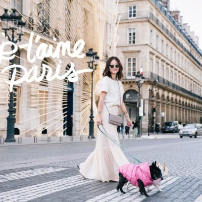 Paris Dog-Friendly Getaway