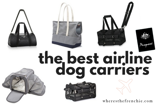 Best Airline Carriers For Your Dog Where S The Frenchie