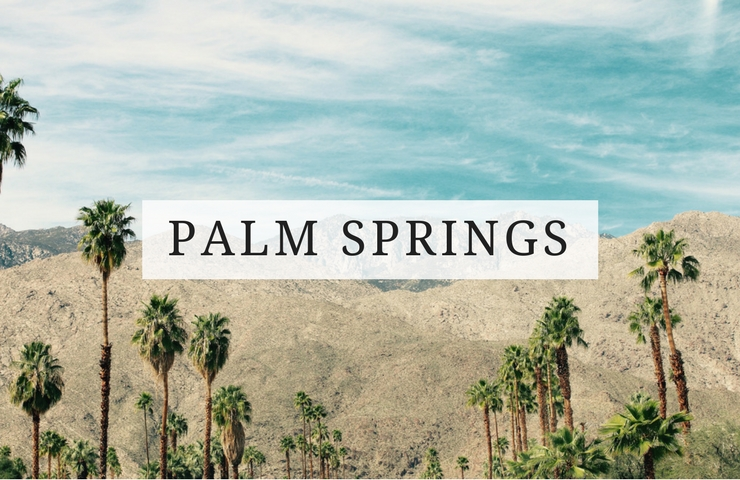 things to do palm springs dog