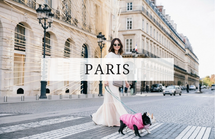 paris things to do with dog