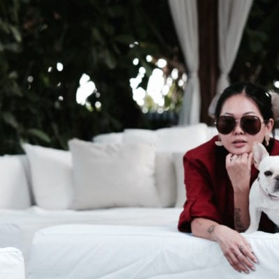 12 Miami Beach Dog Friendly Hotels