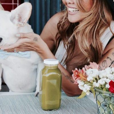 Lifestyle | dog food recipes, home, beauty