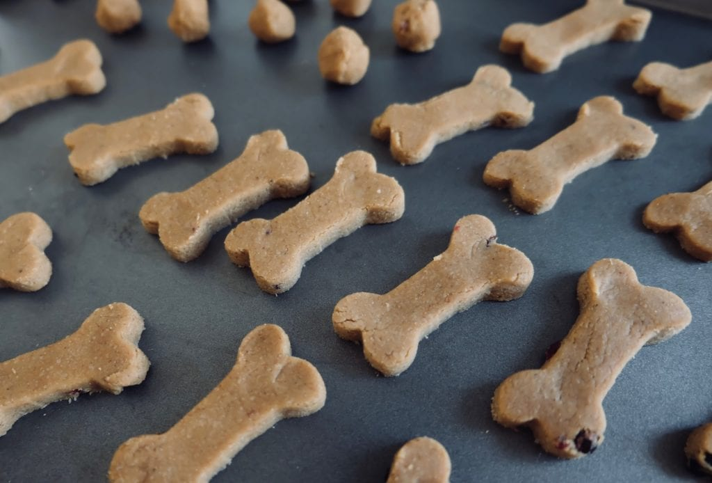 healthy homemade dog treat recipes