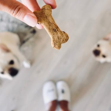 homemade treats for dogs