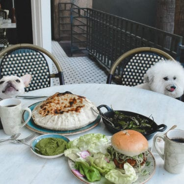 doggie menu