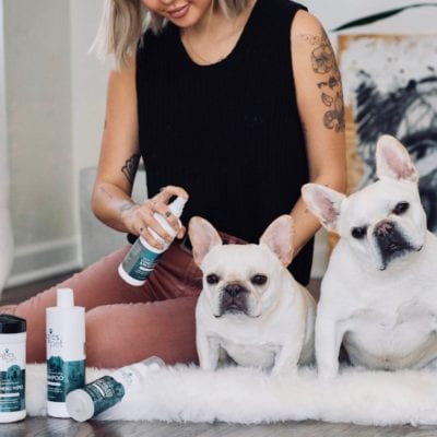 Review: Organic Pet Care Line from Zogics Pet