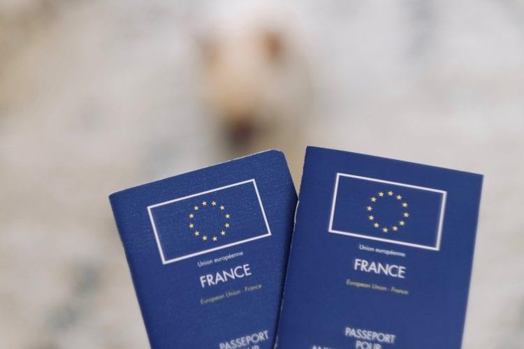pet passports after brexit