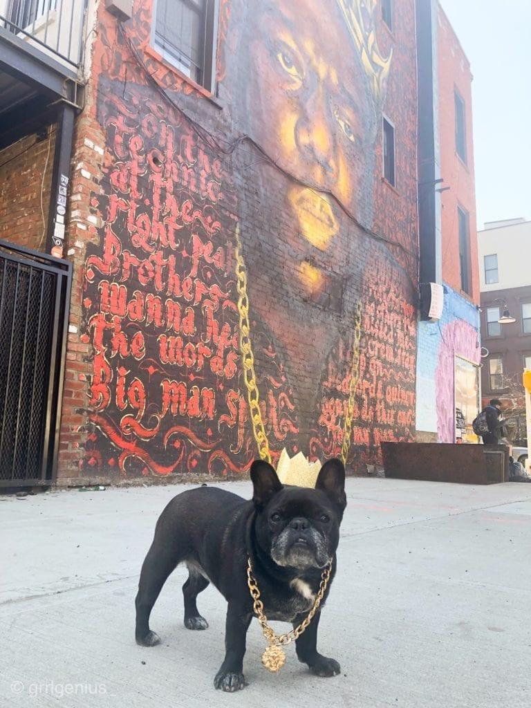 french bulldog mural