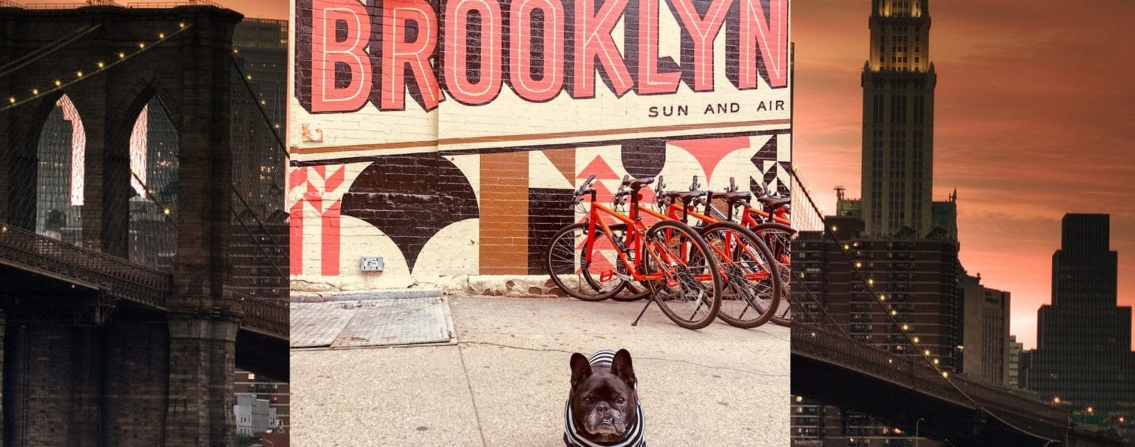 The Most Instagrammable Spots: Brooklyn Edition